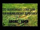 20 полезных советов начинающему лучнику Arche Noob