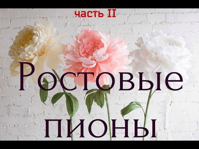 ГИГАНТСКИЕ ростовые цветы. Пион (часть II) Giant paper flowers | Peony | Part 2