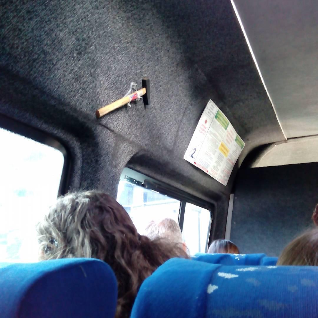 прикольные картинки в дорогу на автобусе получат