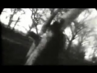 Toshi - misty love [pv]