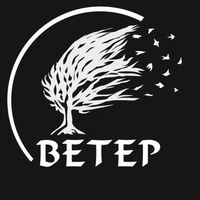 "Логотип РОК-АССОЦИАЦИЯ ""ВЕТЕР"""