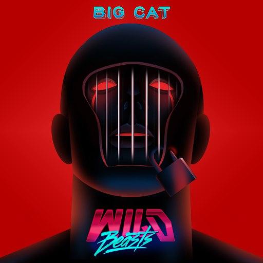 Wild Beasts альбом Big Cat