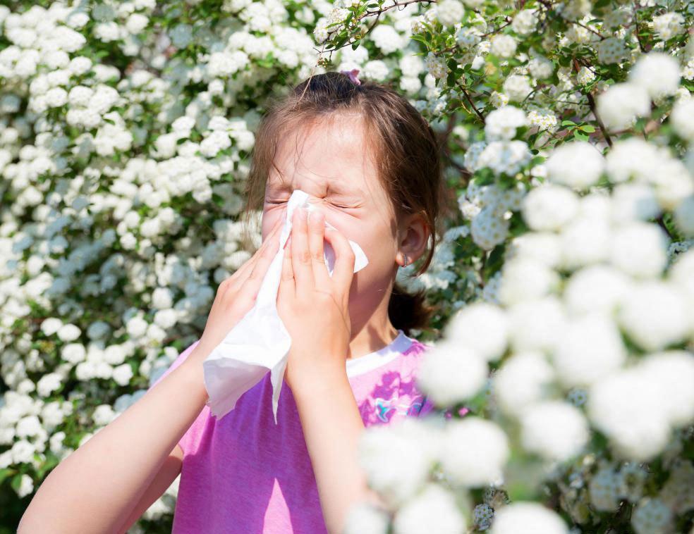 Те, у которых атопия, часто испытывают аллергию на окружающую среду.