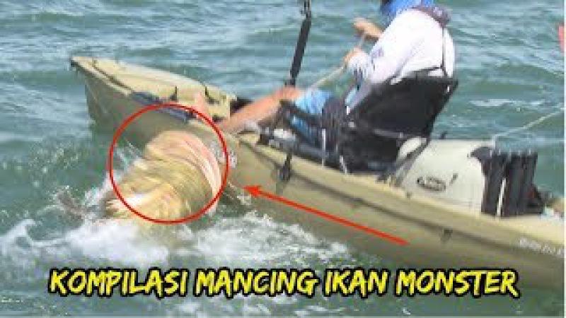 Video Kompilasi Memancing Ikan Monster Air Asin dan Tawar