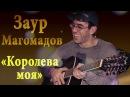 Заур Магомадов - Королева моя ꟾ 🎸 Чеченская гитара 2017 🎸