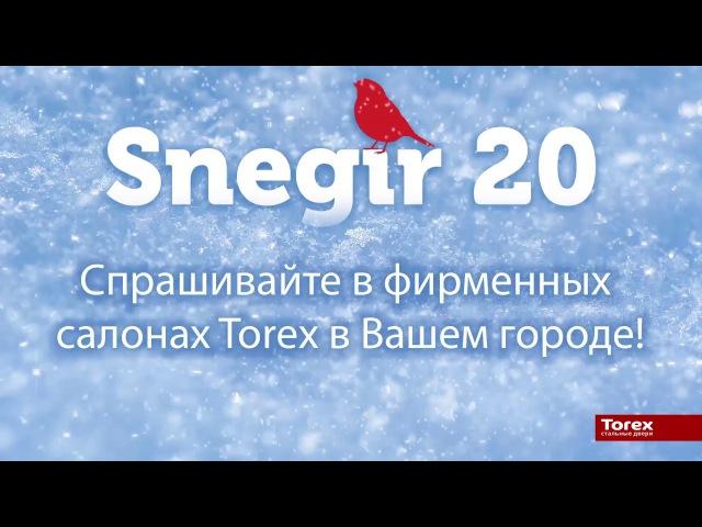 Дверь Torex Snegir 20 (Снегирь 20)