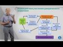 Курс лекций Фондовый рынок Лекция 2 Доверительное управление