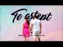 Bibanu MixXL Nico - Te astept (feat Sebastian Lala)