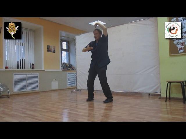 DAI SIFU SERGEI SHELESTOV Wing Chun Ruyi Qigong Neigong Forms Rings