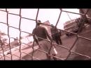 Fat Joe Feat. Grand Puba & Diamond D - Watch The Sound