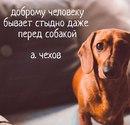 Сергей Мазутов фото #35