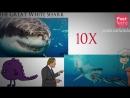क्या दुनिया की सबसे बड़ी शार्क आज भी जिन्दा है Megalodon- Worlds Largest Shark - Still Alive