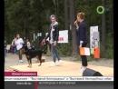Выставка беспородных собак 2017  - репортаж ОТВ