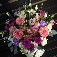 Где купить цветы мимоза в саранске, подарки цветы для начальника женщины