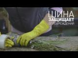 ДЛЯ ТЕХ,  КТО ЖДЁТ ПОСЫЛКУ - сбор посылок в Питомнике Сады Урала