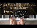 Natalya Plays Piano - Newt Says Goodbye to Tina / Jacob's Bakery - Piano Cover