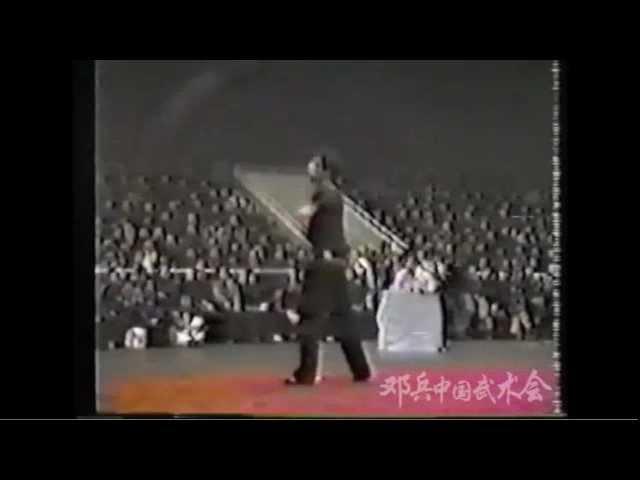 DengBing 198x JiuJieBian 九節鞭(双鞭)