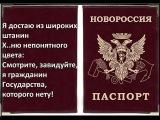 Путин признал паспорта террористической организации ЛДНР Новороссия