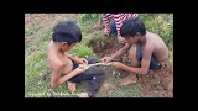 100% Реальная Жизнь Три Брата Страшно!, Камбо Блокбастер с рисовых полей 5 2017