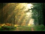 Alexy.Nov - Beautiful August (alternate version)
