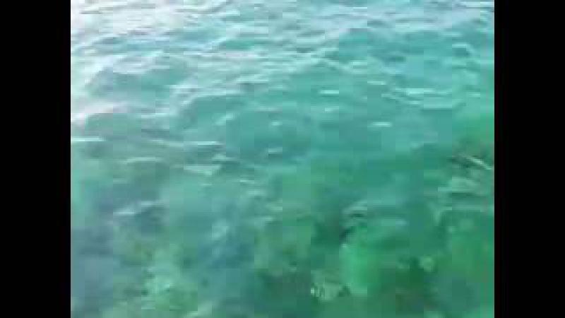 Huzur ! Deniz kokusunu içinde hisset...