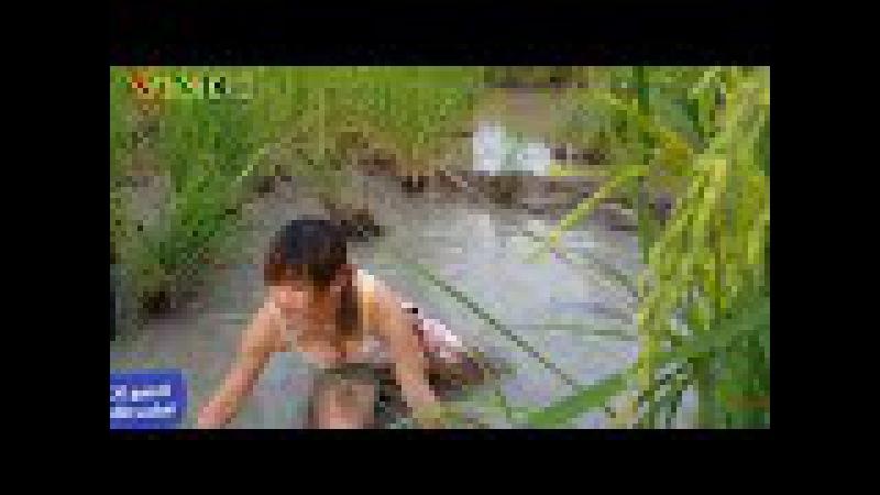 Cô gái xinh đẹp đi bắt cá | Cuộc sống quê tôi P2 | Variety Music Channel