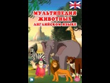 Мультипедия животных на английском языке The Hamster