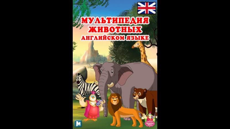 Мультипедия животных на английском языке Multipedia of Birds. Part 1