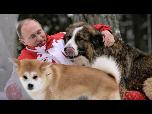 Любимая песня Путина Так скучала я...