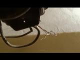 Как остановить, обмануть старый дисковый счетчик света перевернув его без магнита