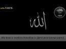 17-гIа. Абу-Бакр а, кхиболу Асхьабаш а. (Дела реза хуьлда царна)