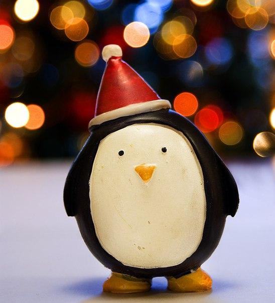 Накануне праздников в Школе появилось Рождественское предложение! Слу
