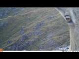 Сибирский горный козел в Катон-Карагае