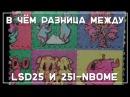 Различия LSD25 и 25i nbome Neuro Soup на русском от Shintarou 18