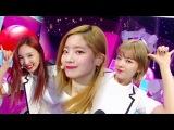 TWICE - Signal @ Inkigayo 170521