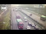Стадо баранов на трассе стало причиной смертельного ДТП в Пекине