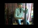 Brian Bromberg bassline (Jaco Pastorius) - The Chicken