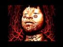 Sepultura Roots Bloody Roots Lyrics in Description