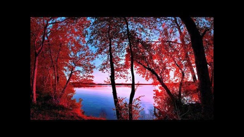 В красные тона Раймонд Паулс In red Tones Raymond Pauls ВидеоКанал exZotikA Max