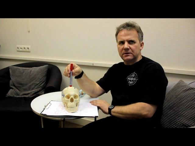 Что лечит повязка остеопата Федора Гити