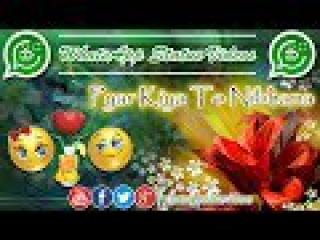 Pyar kiya to Nibhana (Female)| WhatsApp 30 Sec Status | WhatsApp Status Videos