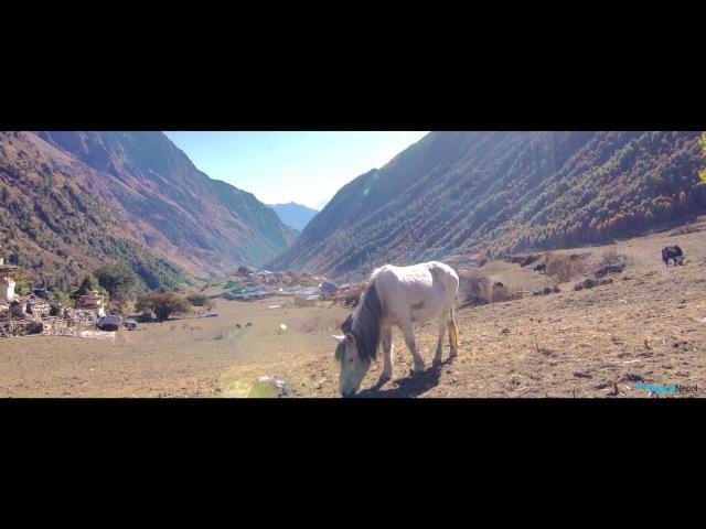 Manaslu Circuit and Tsum Valley Trek   Magical Nepal