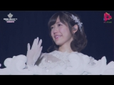Sakura no hanabiratachi for Watanabe Mayu