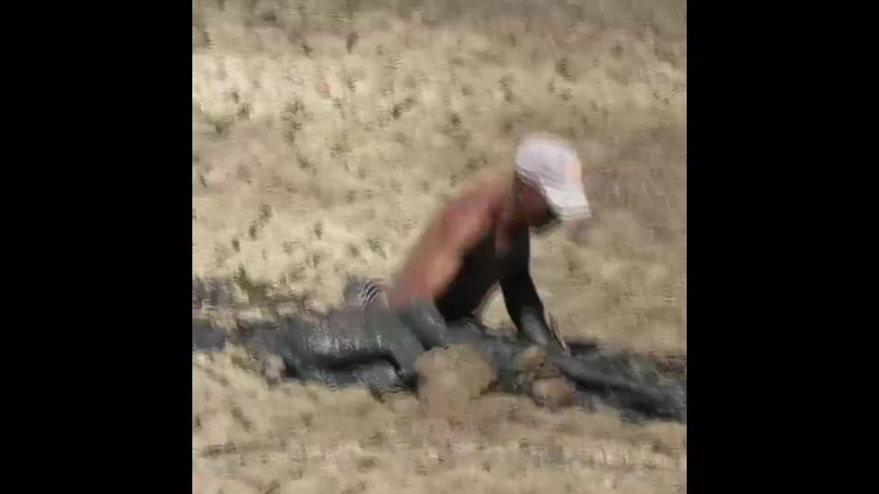 KimisiKendisini Medeni sayıp Zevk için hayvanları öldüren Zenginlere inat, çamura batan geyiği kurtaran kahraman gariban