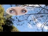 Люблю твои глаза (Юрий Лорес)