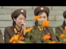 Група крови-DPRK_КНДР