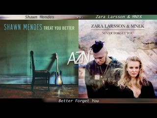 Better Forget You - Shawn Mendes vs. Zara Larsson MNEK (Mashup)