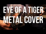 Eye of a tiger METAL COVER