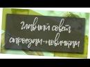 САМЫЙ ВАЖНОЕ ДЛЯ СЫРОЕДОВ НОВИЧКОВ ГЛАВНОЕ В ПЕРЕХОДЕ НА СЫРОЕДЕНИЕ Андрей Счастье сыроедение фрукторианство raw