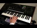 Haykakan Harsanekan Shaxov Parayin Popuri Garik on keyboards solo █▬█ █ ▀█▀